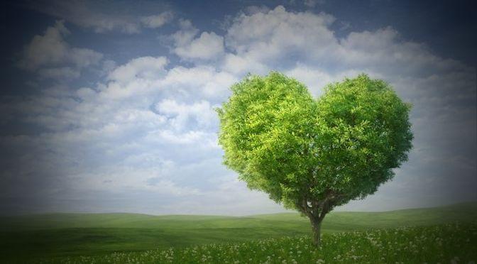 Iubirea este un mod de viață