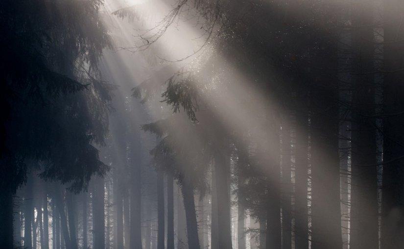 Lumini albe în ceață